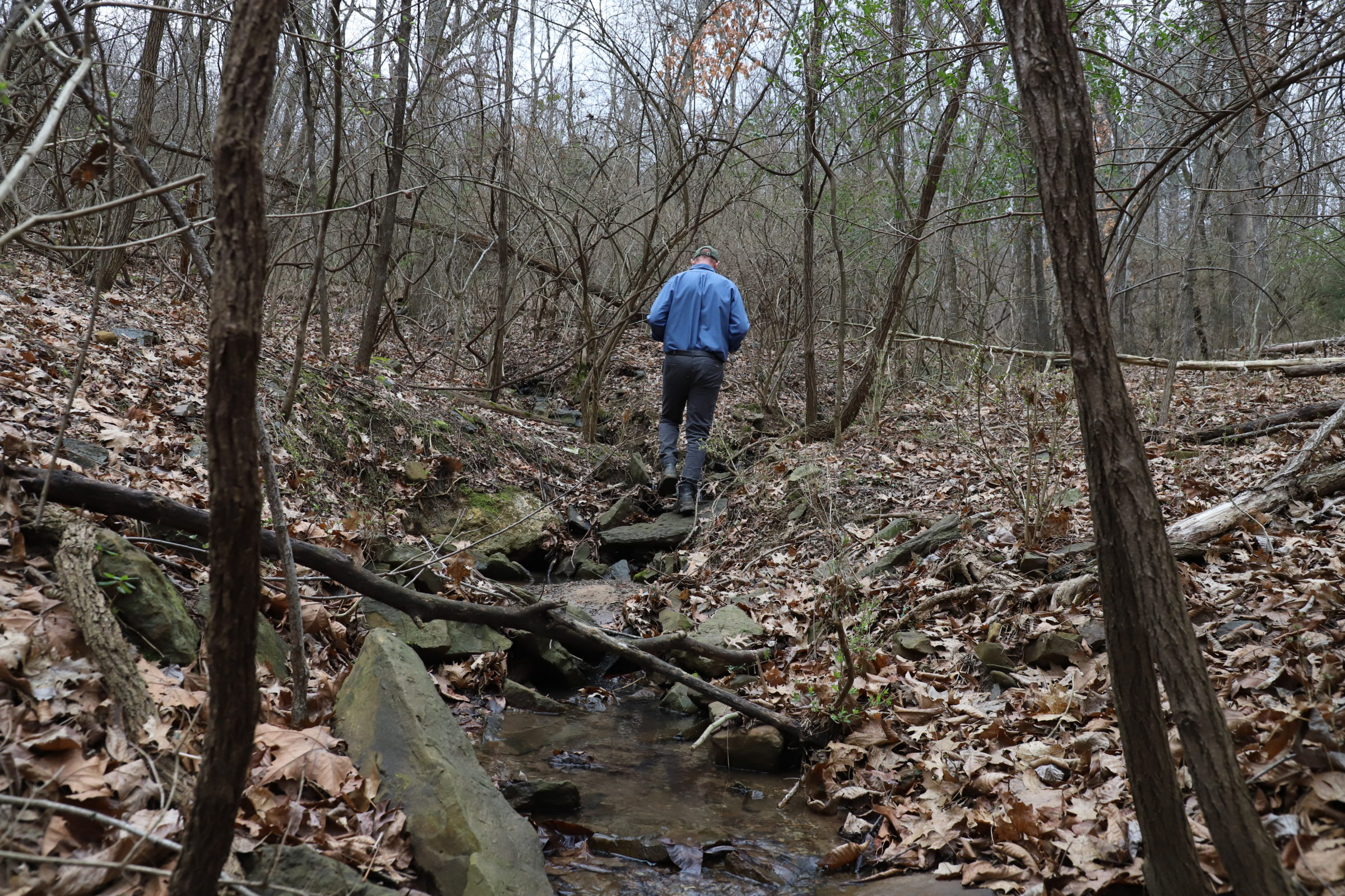 A man walks away from the camera along a creek. It is winter and leaves cover the ground.