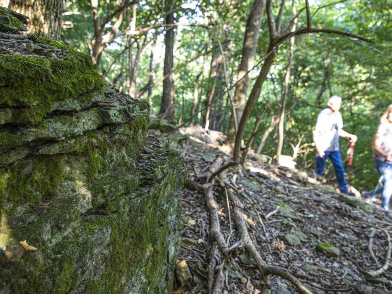 Hikers walk past a mossy rock outcropping